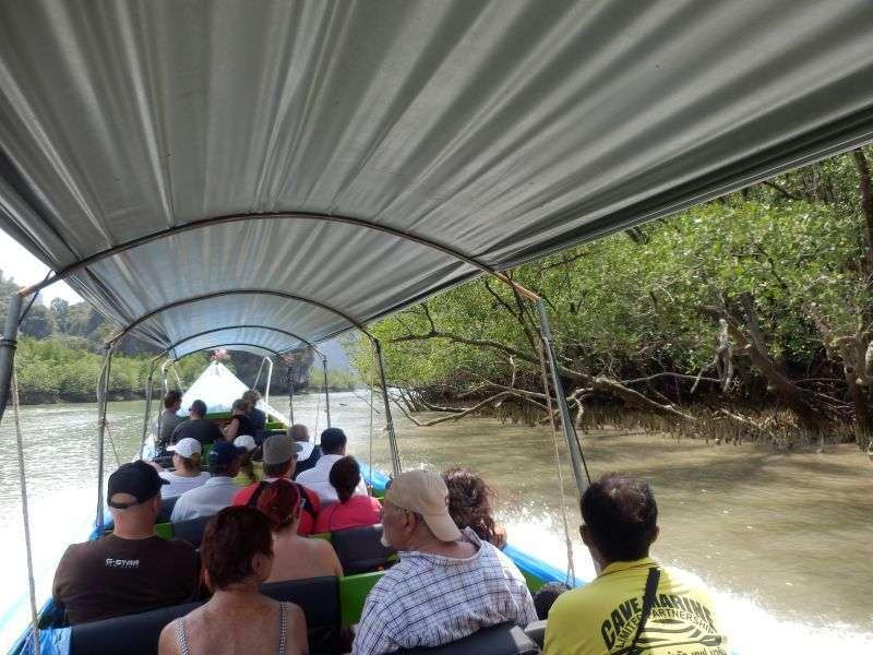 mit dem Longtail durch die Mangroven